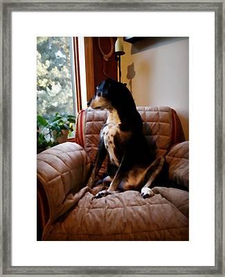 Maggie's Spot Framed Print