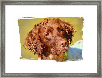 Maggie Head 3 Framed Print