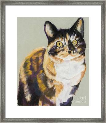 Maggie Mae Framed Print by Pat Saunders-White