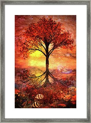 Magic At The Shore Framed Print