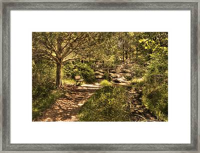 Framed Print featuring the photograph Magic Bench by Tamyra Ayles