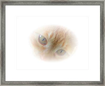 Magic Eyes Framed Print