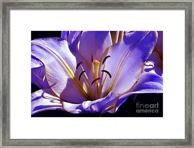 Magic Floral Poetry Framed Print