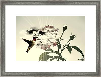 Magic Flower Framed Print