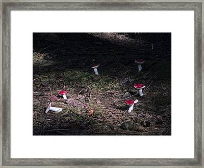 Magic Forest Framed Print by Frits Selier
