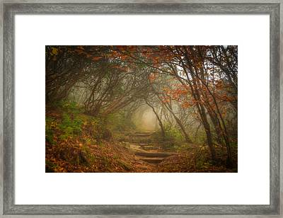 Framed Print featuring the photograph Magic Forest by Joye Ardyn Durham
