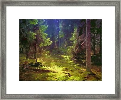 Magic Forest Framed Print