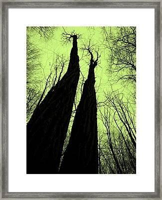 Magic Forest_2 Framed Print
