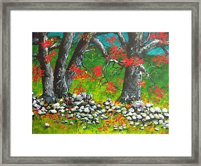 Magic Hillside Framed Print by Dan Whittemore