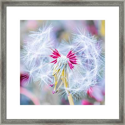Magic In Pink Square Framed Print