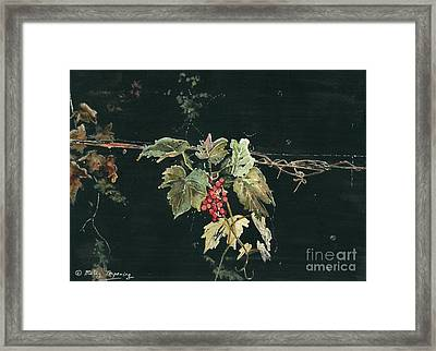 Magic In The Darkness Framed Print