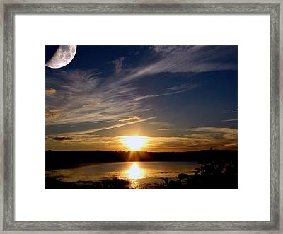 Magic Moment Framed Print by Adele Moscaritolo