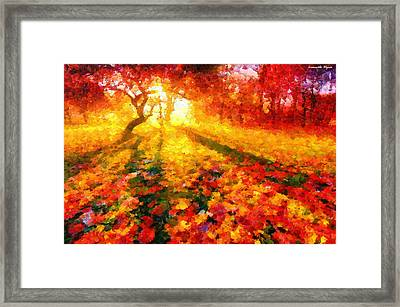 Magic Park - Da Framed Print