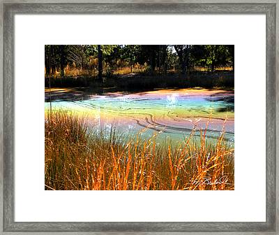 Magic Pond Framed Print