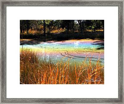 Magic Pond Framed Print by Melissa Wyatt