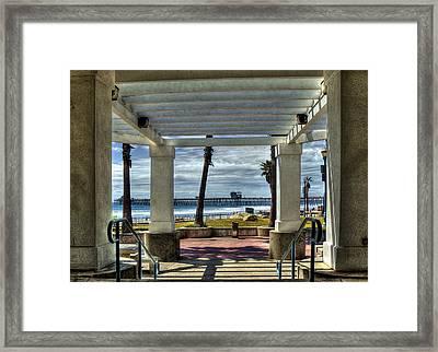 Magic Trellis Framed Print by Frank Garciarubio