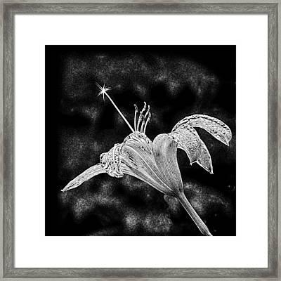Magic Wand 3 Framed Print by Michael Taggart II