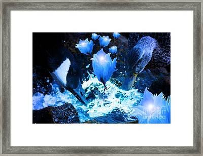 Magic Water Flowers  Framed Print by Cathy  Beharriell