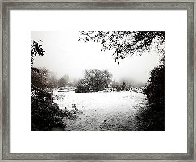 Magic Winter In Sardinia Framed Print