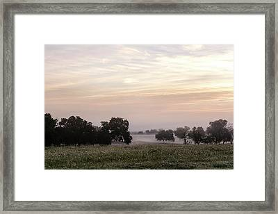 Magical Field Framed Print