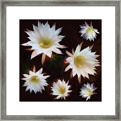Magical Flower Framed Print by Gina Dsgn