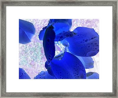 Magical Flower I Framed Print