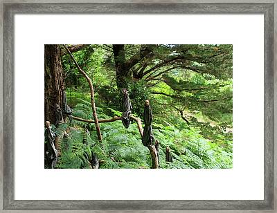 Framed Print featuring the photograph Magical Forest by Aidan Moran