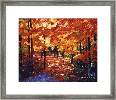 Magical Forest Framed Print by David Lloyd Glover