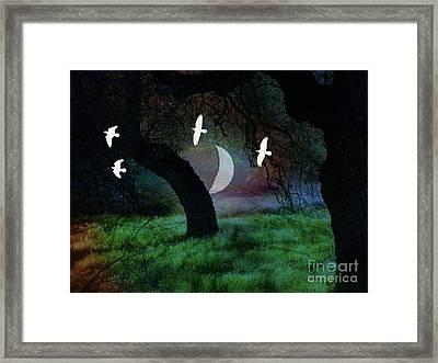 Magical Forest Night Framed Print by Robert Ball