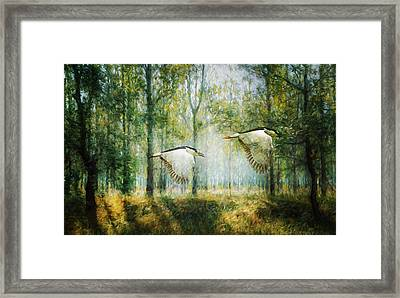Magical Forests Impressionism Framed Print by Georgiana Romanovna