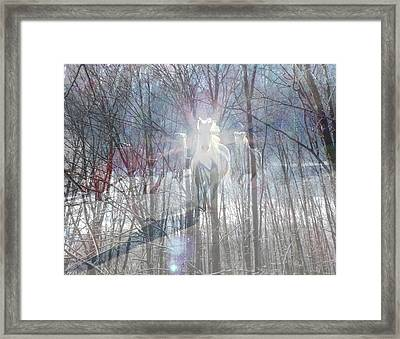 Magical Horses Framed Print