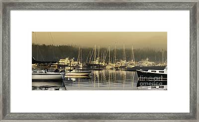 Magical Light Of Mt Desert Island Framed Print by Thomas Schoeller
