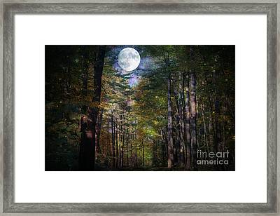 Magical Moonlit Forest Framed Print by Judy Palkimas