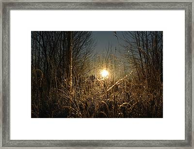 Magical Sunrise Framed Print