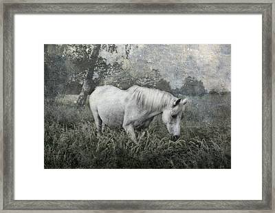 Magical View Framed Print by Joachim G Pinkawa