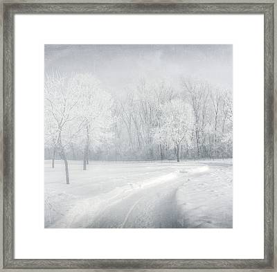 magical Winter day Framed Print