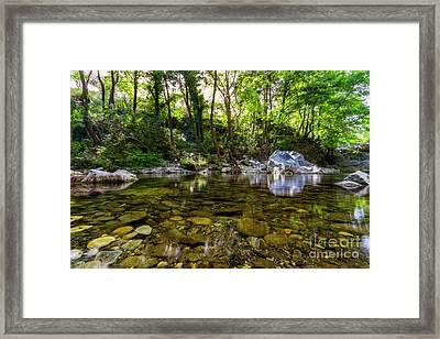 Magical Woods Framed Print