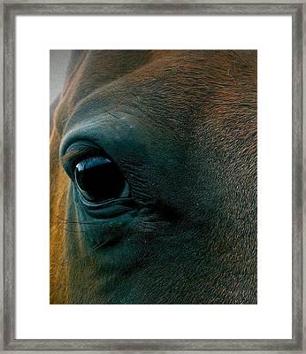 Magics Beauty Framed Print