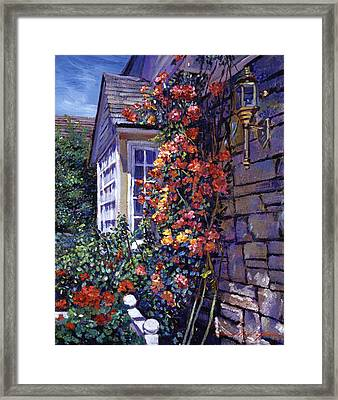 Magnificent Climbing Roses Framed Print