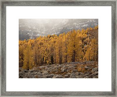 Magnificent Fall Framed Print