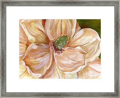 Magnificent Magnolia -1 Framed Print