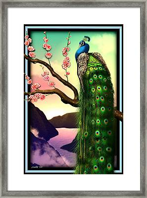 Magnificent Peacock On Plum Tree In Blossom Framed Print