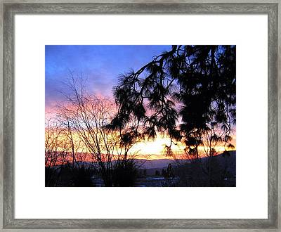 Magnificent Winter Sky Framed Print by Will Borden