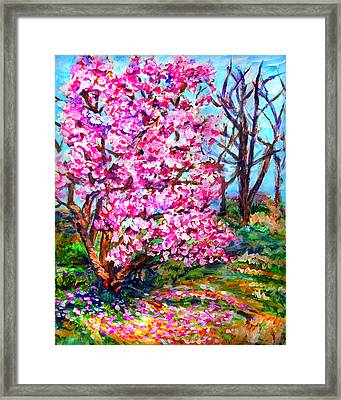 Magnolia - Early Spring Framed Print by Laura Heggestad