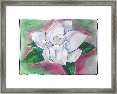 Magnolia 2 Framed Print by Loretta Nash