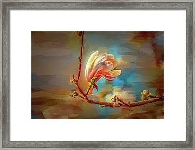 Magnolia Abs #h4 Framed Print