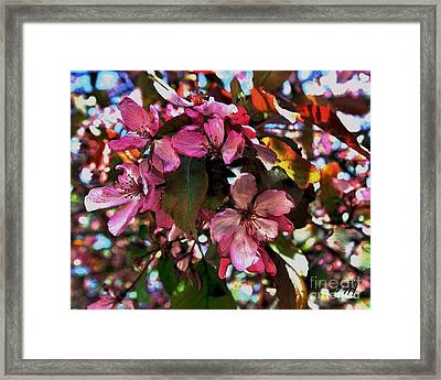 Magnolia Abstract Framed Print by Marsha Heiken