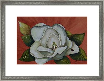 Magnolia Bloom With Ladybug Framed Print by Yvonne Kinney