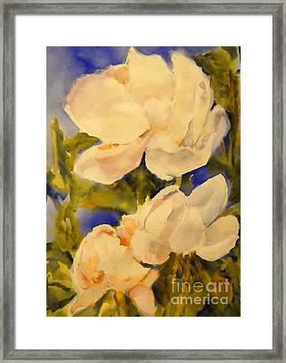 Magnolia Blooms Framed Print