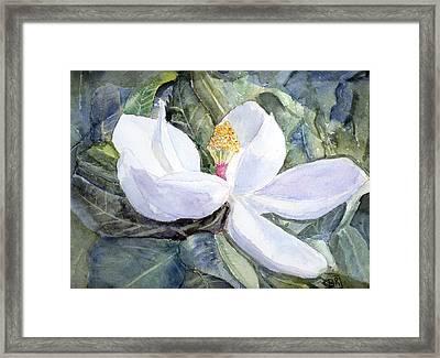Magnolia Blossom Framed Print